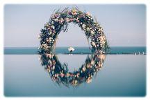 Michelle Pastel / Emotive Photography
