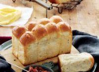 brood en beskuit