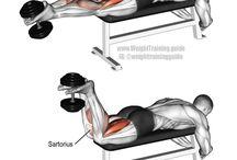 Trening - legs
