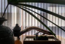 Exotic Plants / 植物
