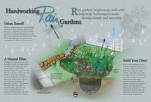 Rain Garden Ideas / by Ellen Polzien