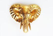 elephants / A board designed to celebrate my love for elephants!