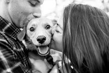 Engagement Photography + Dogs!