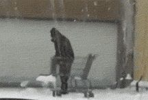 The best Gifs