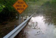 Strange road signs