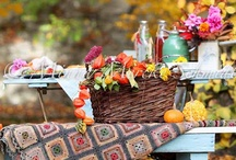 Fall In The Park / by Donna Hardway Yoho