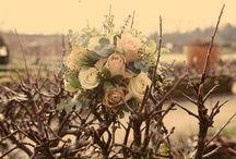 Winter Weddings at The Walled Garden Midhurst / Magical atmosphere in Winter at The Walled Garden
