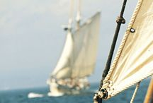 Sail The Seven Seas / the romance of the seven seas lies in direction of the wind upon the sails... / by Darby Johnson