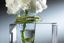 Floral Arrangements / floral art