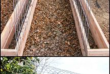 SAKG ideas / Ideas that are feasible for our school garden