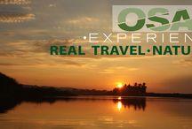 Nature / Lush nature of the south coastline of Costa Rica, Corcovado & Osa Peninsula