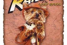 Yorkie movie poster