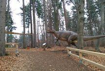 Parcul Dinozaurilor Rasnov, Brașov,  Romania / Parcul dinozaurilor, România,  Brașov,  Rasnov