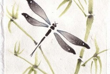 dragonflies / by Tracy Moreau Design