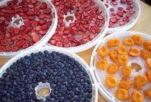 canning/jam/drying food