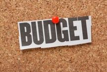 Budgeting Tips / Learn how to create a budget, improve on your current budget and cut your budget down to size.