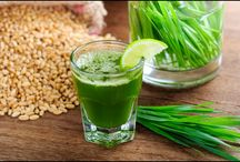 Health Benefits Wheat Grass