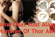 Jamu Obat Kuat Alami Hammer Of Thor Asli