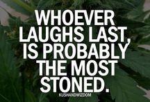 Everyday life #420
