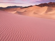 I <3 the desert