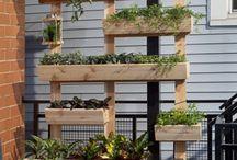 Home - Outdoor / by Fairlight