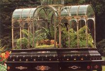 Planten & diren