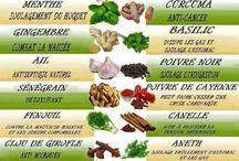 les épices et plantes