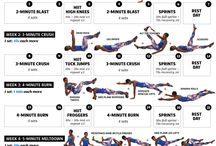 Fitness / Workouts I need to do to get in shape