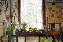 Gardening / by Teresa Bauman