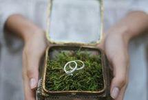 Rings holder
