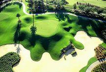 Florida Courses / by Golfhub Teetimes