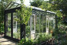 greenhouse Joshua