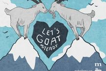 All About Goats / The ultimate guide to goats.