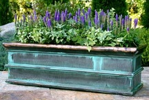Garden:  Window Boxes & Pots / by Sue Scully