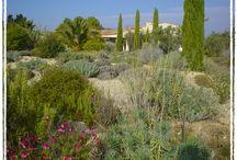 SEVERTS / SUD ESPACES VERTS Entretien et création d'espaces verts http://www.severts.fr/