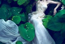 Going Green / by Maree Hall