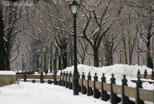 Winter Home Decor / Winter Photography, etc.