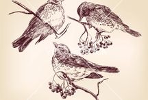 Bird / Lovelifebag