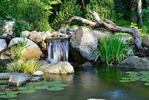 Pools & Ponds - Natural