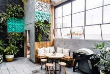 Cafe mamey / All about a coffee shop