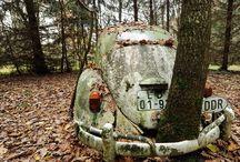 Volkswagon / by Marnie Loken