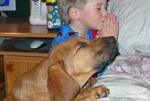 praying kids and their animals