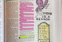 Beautiful Word Bible Illustrating