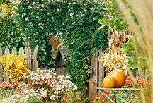 Garden / by Kendria Sanders