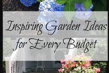 Flowers, Landscaping, Plants