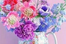 *Bloomin' Pretties / by Linda Diane Martinez-Fenley