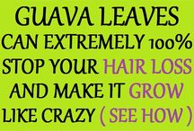 Hair-Guava leaves
