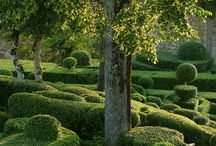 Jardins / by Jardiland