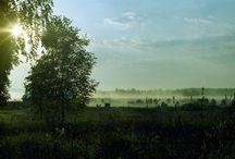 Пейзаж на пленку