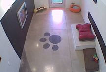 Dog Boarding Kennels / Ideas & inspirations for dog boarding kennels & pet hotels.